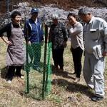 復興の思い受け継ぎ桜植樹 釜石・唐丹の本郷地区