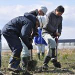 再生の志 南相馬に残す クロマツ500本記念植樹