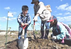 市内の小学生らが参加した植樹会